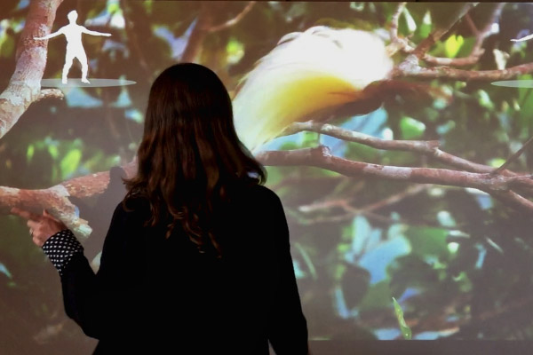 The Color of Life Gesture Recognition interactive at the California Academy of Science developed by Unified Field allows visitors to transform themselves into birds.