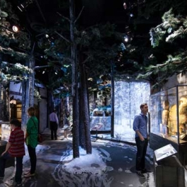 Unified Field Interactive Studio created a host of interactives for the National WWII Museum's Road to Berlin and Road to Tokyo.